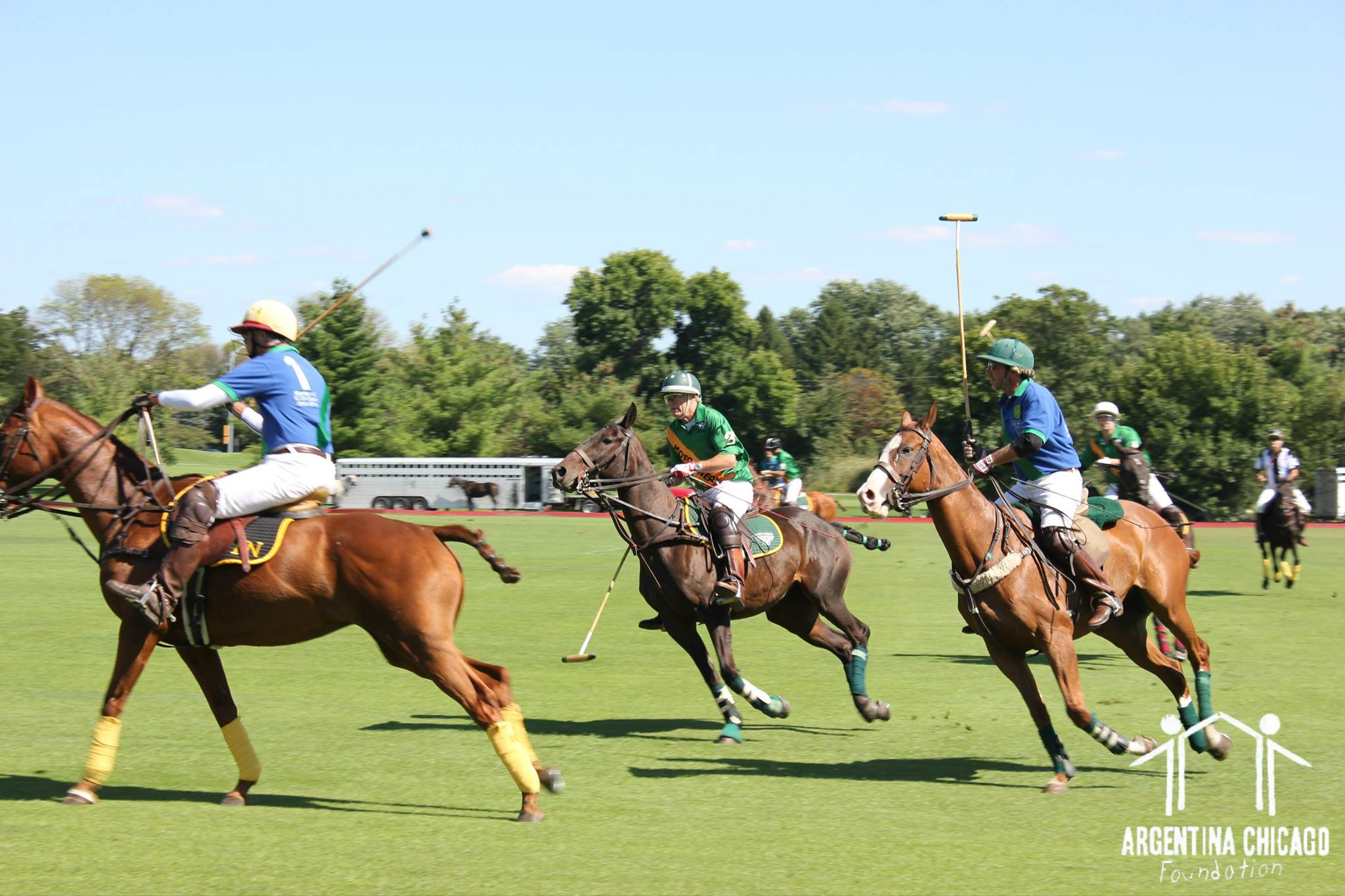 Argentina Polo Day 2014